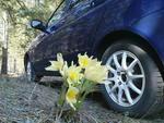 Весна наступает